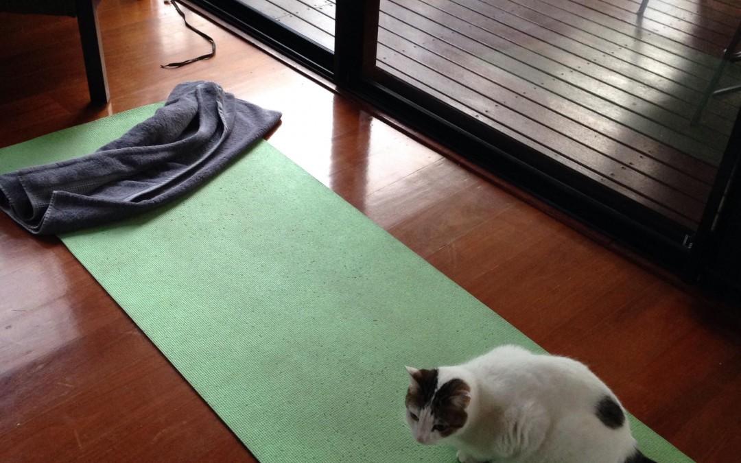 5 Tips to Establish a Home Yoga Practice