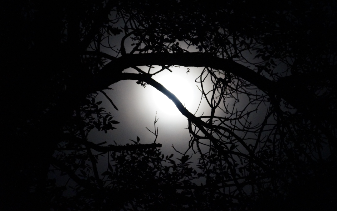 Yoga: Dark Nights of the Soul & How to Get Through Them